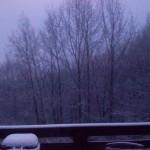 Feb 2012 snow