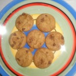 Nutrisystem Chocolate Chip Cookies