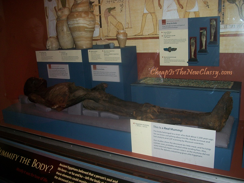 Smithsonian Museum of Natural History Mummy