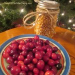 Cranberry and popcorn garland with Jolly Time popcorn.