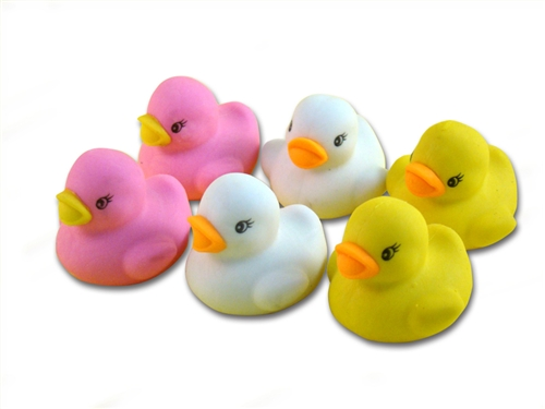 rubber ducky day