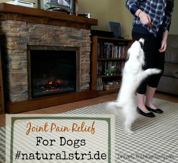 Natural Solutions For Active Dogs With Joint Pain #sponsored