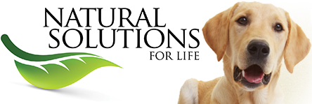 Natural Solutions For Life logo #NaturalStride #sponsored