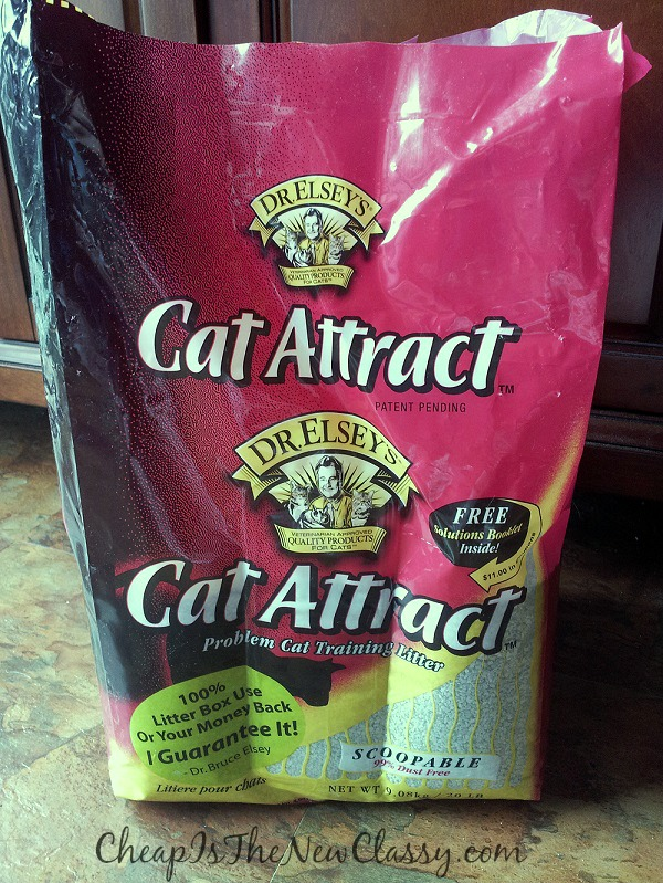 Help your cat have better urinary habits with Cat Attract Litter #sponsored #PreciousCat