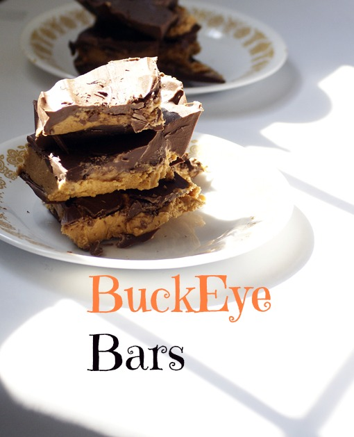 BuckEye Bars: 13 Decadent Recipes With Chocolate to celebrate National Chocolate Day on December 28th | Cheap Is The New Classy