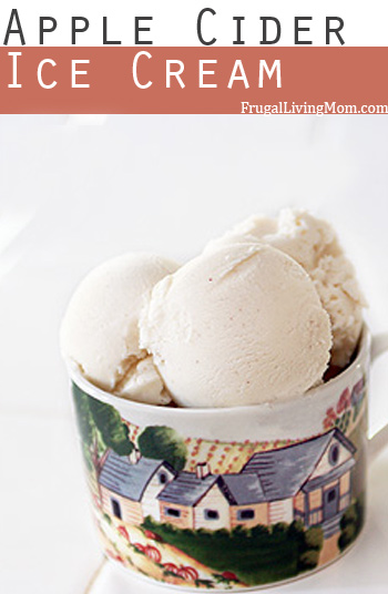 Apple Cider Ice Cream: 11 Creative Ice Cream Recipes for Creative Ice Cream Flavor Day on July 1st | Cheap Is The New Classy