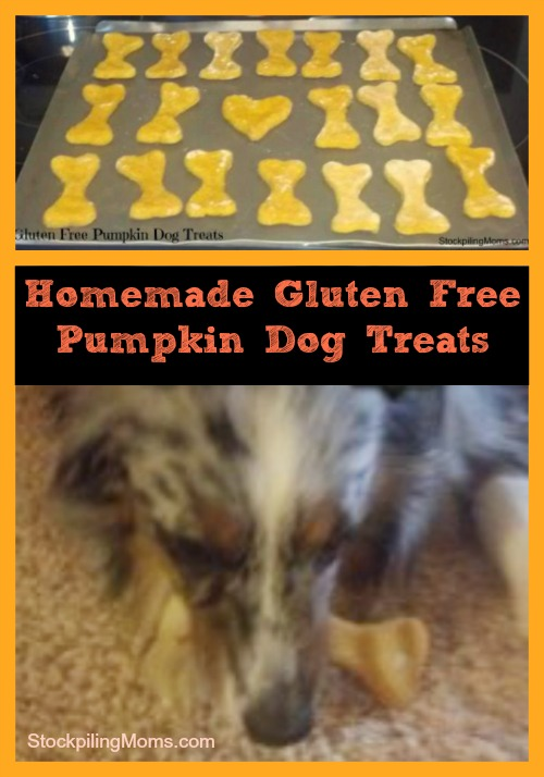 10 Homemade Dog Treats Recipes