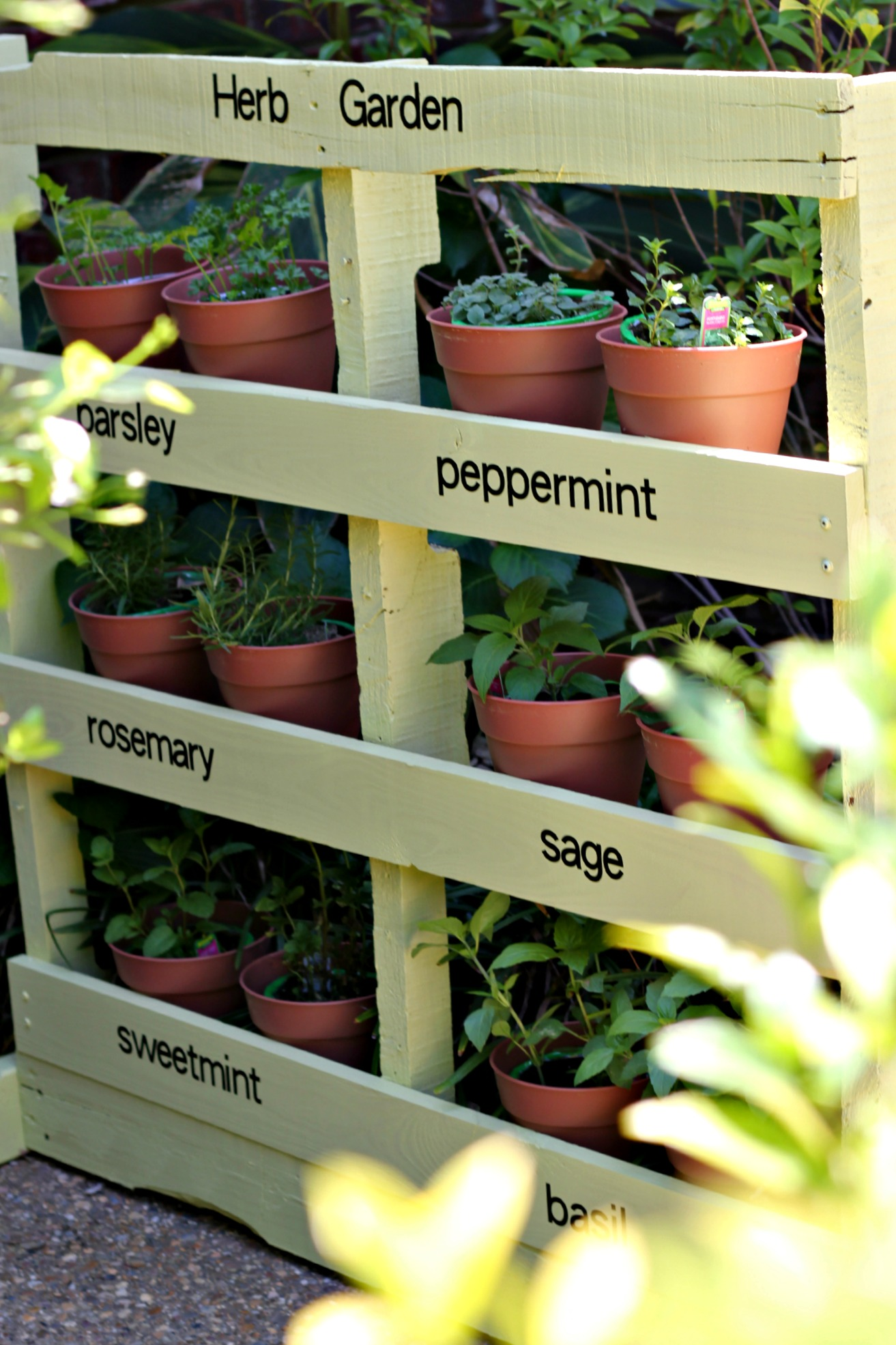 How To Make An Herb Garden From A Pallet: The Ultimate Guide To Fresh Herbs | Cheap Is The New Classy