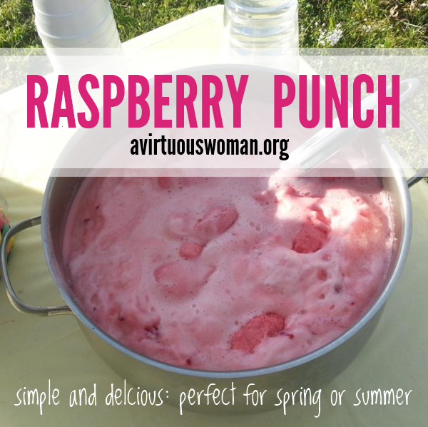 Raspberry Punch: 10 Tasty Punch Recipes To Celebrate National Punch Day | Cheap Is The New Classy