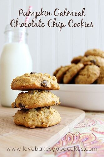 Pumpkin Oatmeal Chocolate Chip Cookies: 10 Tasty Pumpkin Recipes For Fall | Cheap Is The New Classy