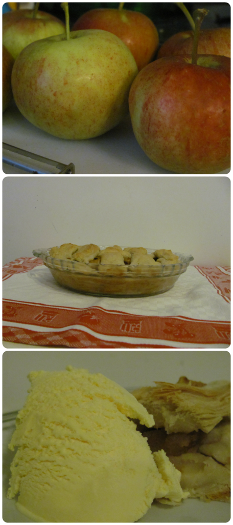 How To Make Apple Pies: 10 Amazing Apple Pie Recipes | Cheap Is The New Classy