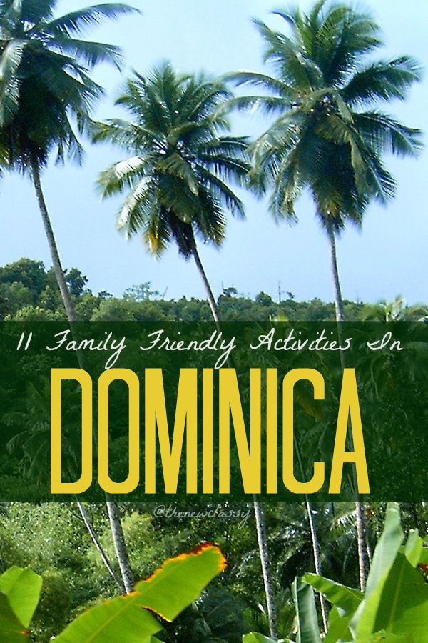 11 Family Friendly Activities In Dominica