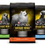 Save $10 On Pro Plan Dry Dog Or Cat Food At PetSmart #ad #BrightMindEffect