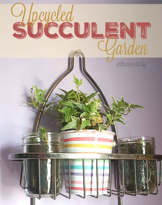DIY Upcycled Succulent Garden | The New Classy