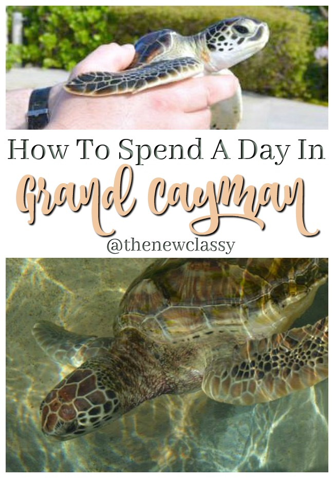 How To Spend A Day In Grand Cayman