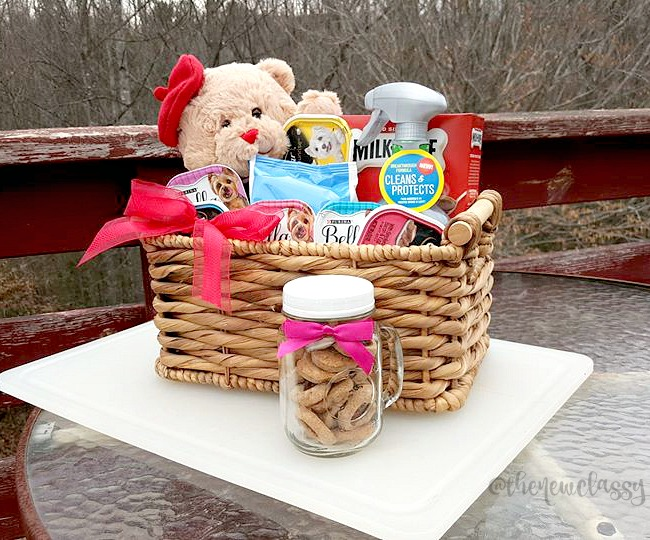 New Puppy? 7 Things To Include In A Chihuahua Gift Basket #sponsored #NewPetNoStains
