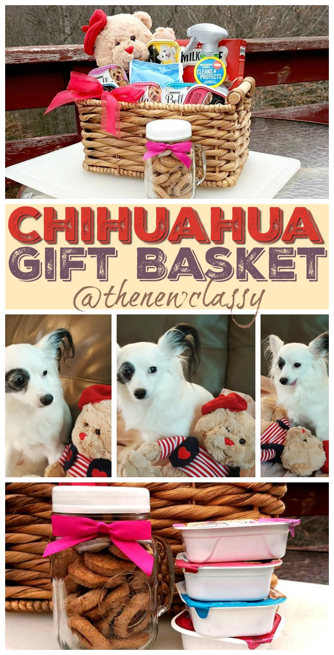 New Puppy 7 Things To Include In A Chihuahua Gift Basket