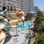 Vacation Myrtle Beach Groundhog Day Specials