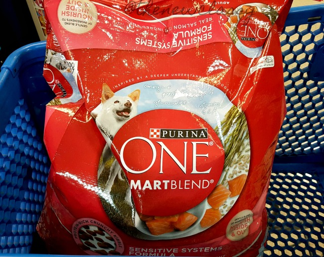 What To Put In A Chihuahua Beach Basket #sponsored #PurinaMysteries