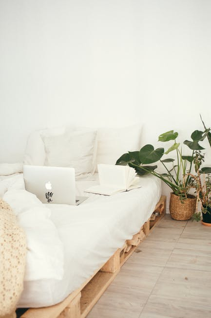 Do You Need To Detox Your Home? | The New Classy